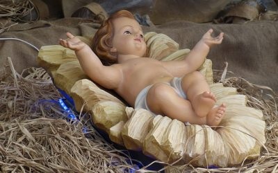 Nativity – Delight or Disaster for our little boy?